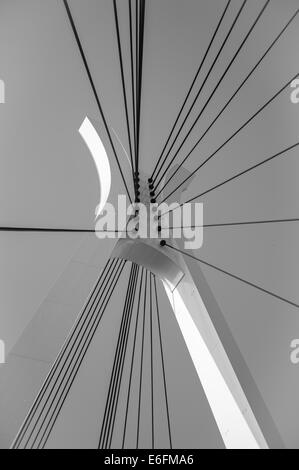 Supporting wires and pillar for a Tokyo suspension bridge - Stock Image