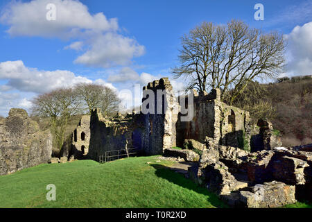 Okehampton castle ruins, Devan, UK - Stock Image