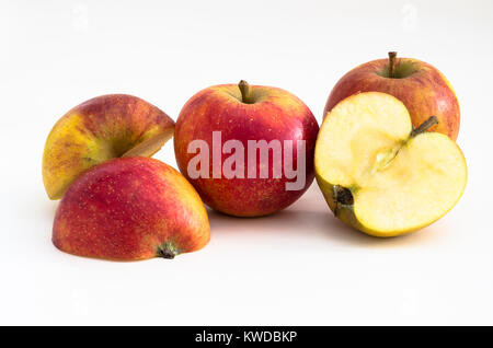 Apple fruit Malus domestica WINTER WONDER ready for eating at Christmas in UK - Stock Image