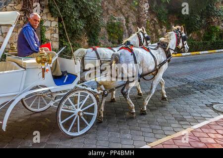 Horses and Carriage, Kusadasi,Turkey - Stock Image