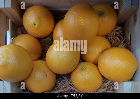 Detail shot of oranges in a wooden shelf - Stock Image