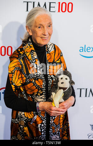 Jane Goodall attends TIME 100 GALA on April 23 in New York City - Stock Image