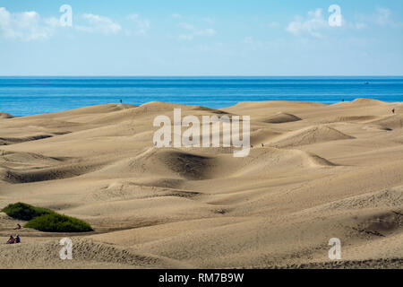 Landscape with yellow sandy dunes of Maspalomas and blue Atlantic ocean, Gran Canaria, Canary islands, Spain - Stock Image