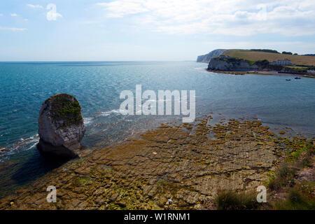 sea,stacks,wave,cut,platform,chalk,beach,Freshwater Bay,Isle of Wight, England,UK, - Stock Image