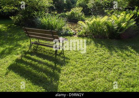 wood bench in front of lush foliage - Stock Image