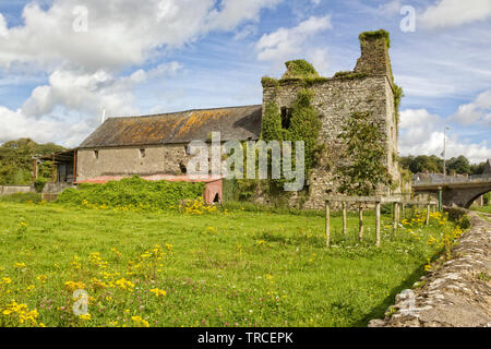 Image of an abandoned Sweetman's Castle in Thomastown,County Kilkenny,Ireland. - Stock Image