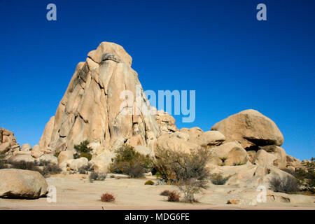 Rock Climb Joshua Tree Big Rocks  Mojave Desert Joshua Tree National Park California - Stock Image