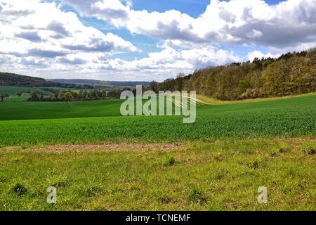 Viewpoint across fields from Wendover Woods, Buckinghamshire, UK - Stock Image