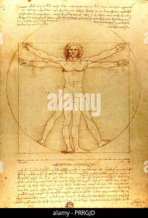 Vitruvian Man by Leonardo da Vinci (1492) drawing pen, ink and wash on paper - Stock Image
