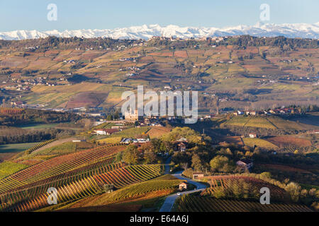 Vineyards & castle, Grinzane Cavour, Cuneo district, Langhe, nr Alba, Langhe, Piedmont (or Piemonte or Piedmonte), - Stock Image