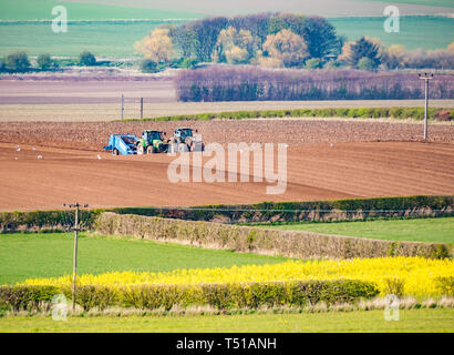 Tractors in ploughed field in agricultural landscape, East Lothian, Scotland, UK - Stock Image