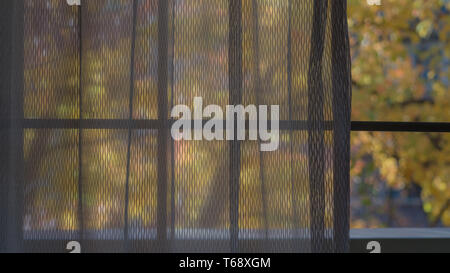 Abstract composition displaying yellow colors of the Autumn through a window- large background and copys space - Stock Image