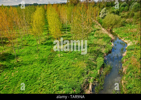 The River Itchen meandering through the Warwickshire countryside - Stock Image