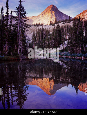 The Pfeifferhorn reflected in South Maybird Lake Wasatch Range south Little Cottonwood Canyon Lone Peak Wilderness - Stock Image
