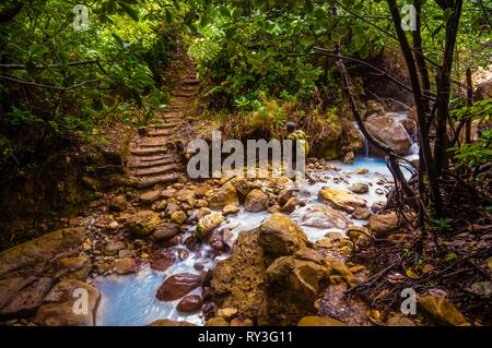 Dominica, Morne Trois Pitons National Park inscribed on the World Heritage List by UNESCO, Desolation Valley, hiker crossing a hot geothermal river in the tropical undergrowth - Stock Image