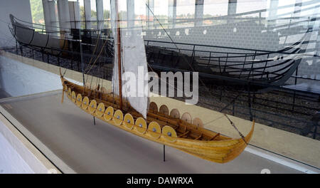 A Viking ship of the 11th century, discoverd in the Roskilde fjord in 1962, and a model of the same ship are presented - Stock Image