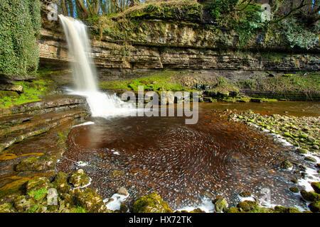 Grange Beck Force near Askrigg - Stock Image