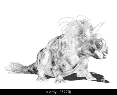 Dinosaurier Albertaceratops / dinosaur Albertaceratops - Stock Image