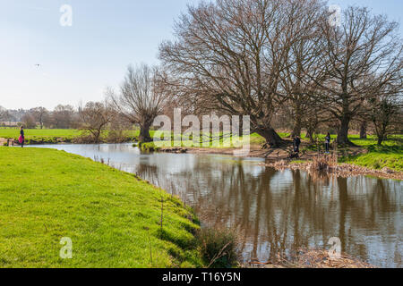 view of the river stour dedham vale suffolk - Stock Image