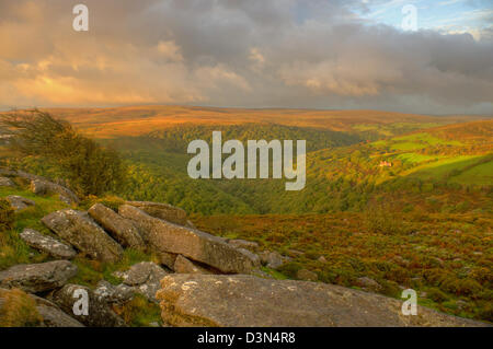 Early morning golden light over the Dart valley - looking from Mel Tor - Stock Image