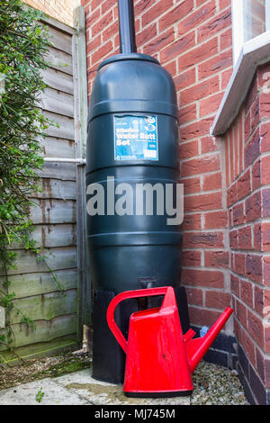 Filling a red watering can from an Environment-friendly Ward Strata slimline water butt installed at the bottom of a downspout of a house in the UK. - Stock Image