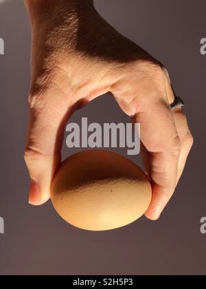 Egg in hand - Stock Image