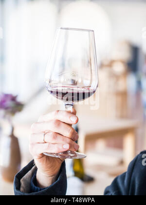 Male hand holding a glass of red wine  at wine tasting in Setugal wine region, Portugal. - Stock Image