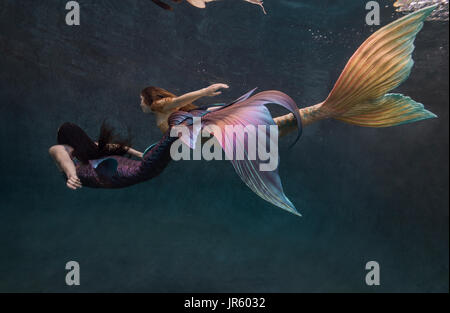 Two mermaids swimming in a pool in Virginia Beach, VA - Stock Image
