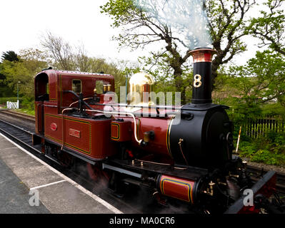 RS 8054  Isle of Man Steam Railway, Port Erin Station, Isle of Man, UK - Stock Image