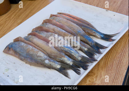 Traditional Dutch haring on a plate - Stock Image