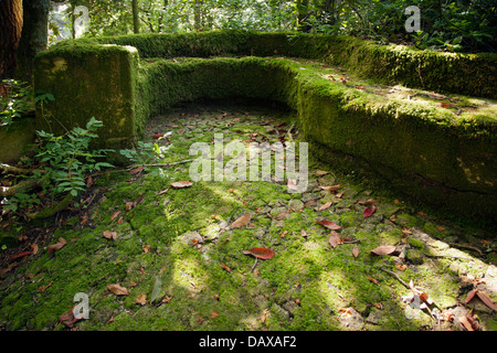 Sintra Gardens, Curving lines of a mossy garden seat in Pena Palace gardens - Stock Image