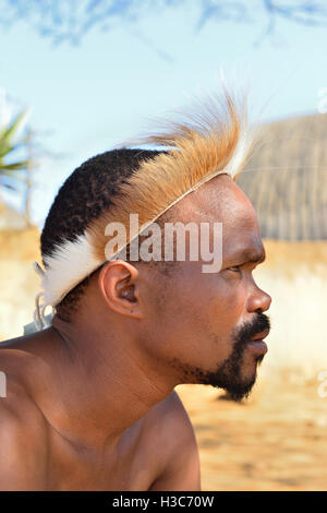 Zulu man troupe member in traditional head gear posing in front of a Zulu rondavel in  the Shakaland Cultural Village - Stock Image