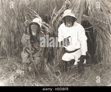Two monkeys dressed in safari outfits - Stock Image