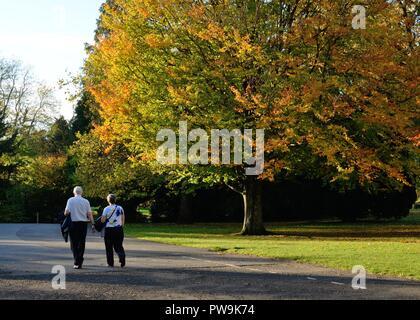 A mature couple walking through Roukenglen Park, East Renfrewshire, Scotland, UK, Europe in Autumn - Stock Image