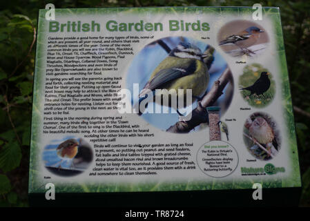Educational wildlife signs in the woodlands around Combe Martin, N Devon - Stock Image