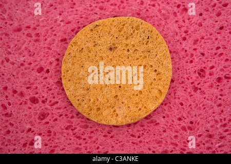 Porous pink structure with yellow circle. A texture. - Stock Image