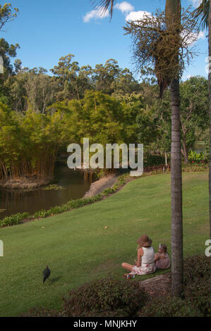 Visitors to the Mt Coot-tha Botanic Gardens, Brisbane, Queensland, Australia - Stock Image