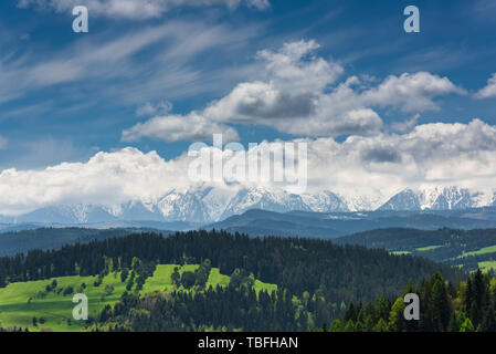Panoramic view over Tatra Mountains from Pieniny National Park in Poland. - Stock Image