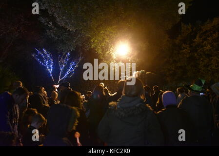 Abbotsbury, Dorset UK 27th October, 2017 Hundreds of people visited to see floodlights in subtropical garden this - Stock Image