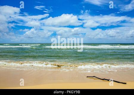 Hawaiian beach - Stock Image