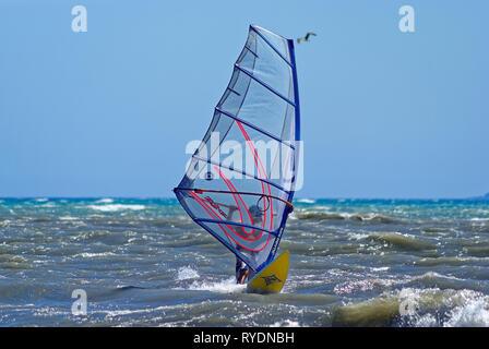 Windsurfer downwind during a mistral windy day in mediterranean sea (St Laurent du Var , France) - Stock Image