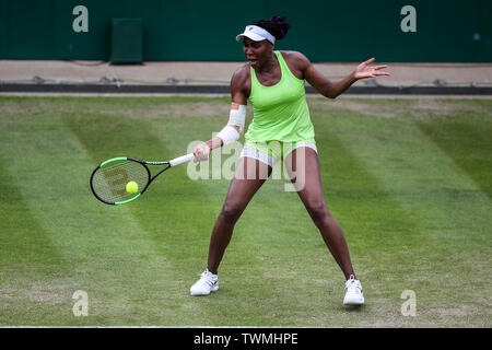 Edgbaston Priory Club, Birmingham, UK. 21st June, 2019. WTA Nature Valley Classic tennis tournament; Venus Williams (USA) hits a forehand in her quarterfinal match against Ashleigh Barty (AUS) Credit: Action Plus Sports/Alamy Live News - Stock Image
