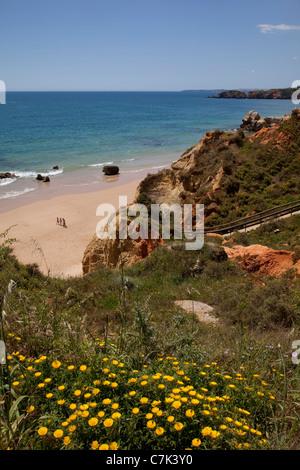 Portugal, Algarve, Praia Da Rocha, Beach & Rocks - Stock Image