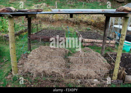 Compost container with mesh sides and waterproof tin roof - Stock Image