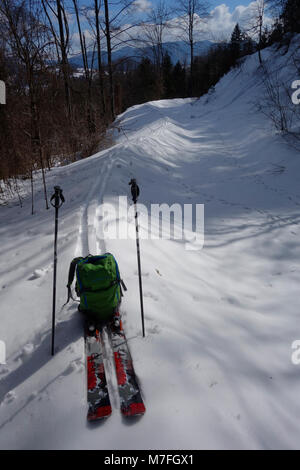 A pair of touring skis on a ski track in woods with backpack. Slovenia. - Stock Image