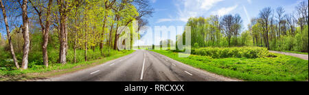 Road panorama on sunny summer day - Stock Image