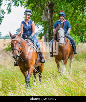 A couple, man and woman, out riding horses on a summers day - Stock Image