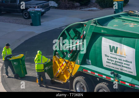 Two Waste Management workers empty green & yellow plastic trash containers in a residential area, Castle Rock Colorado US. Photo taken in April. - Stock Image