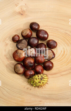 Group of chestnuts in a wooden background. - Stock Image