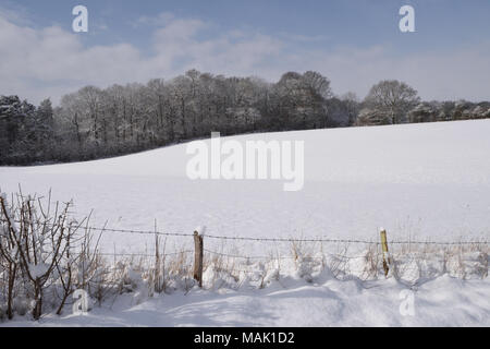 A snow covered field in March with a barbed wire fence. Bedgebury Forest, Kent, England. UK. - Stock Image